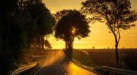 road sunset back light 4k 1540134780 200x110 - Road Sunset Back Light 4k - sunset wallpapers, road wallpapers, nature wallpapers, hd-wallpapers, 5k wallpapers, 4k-wallpapers