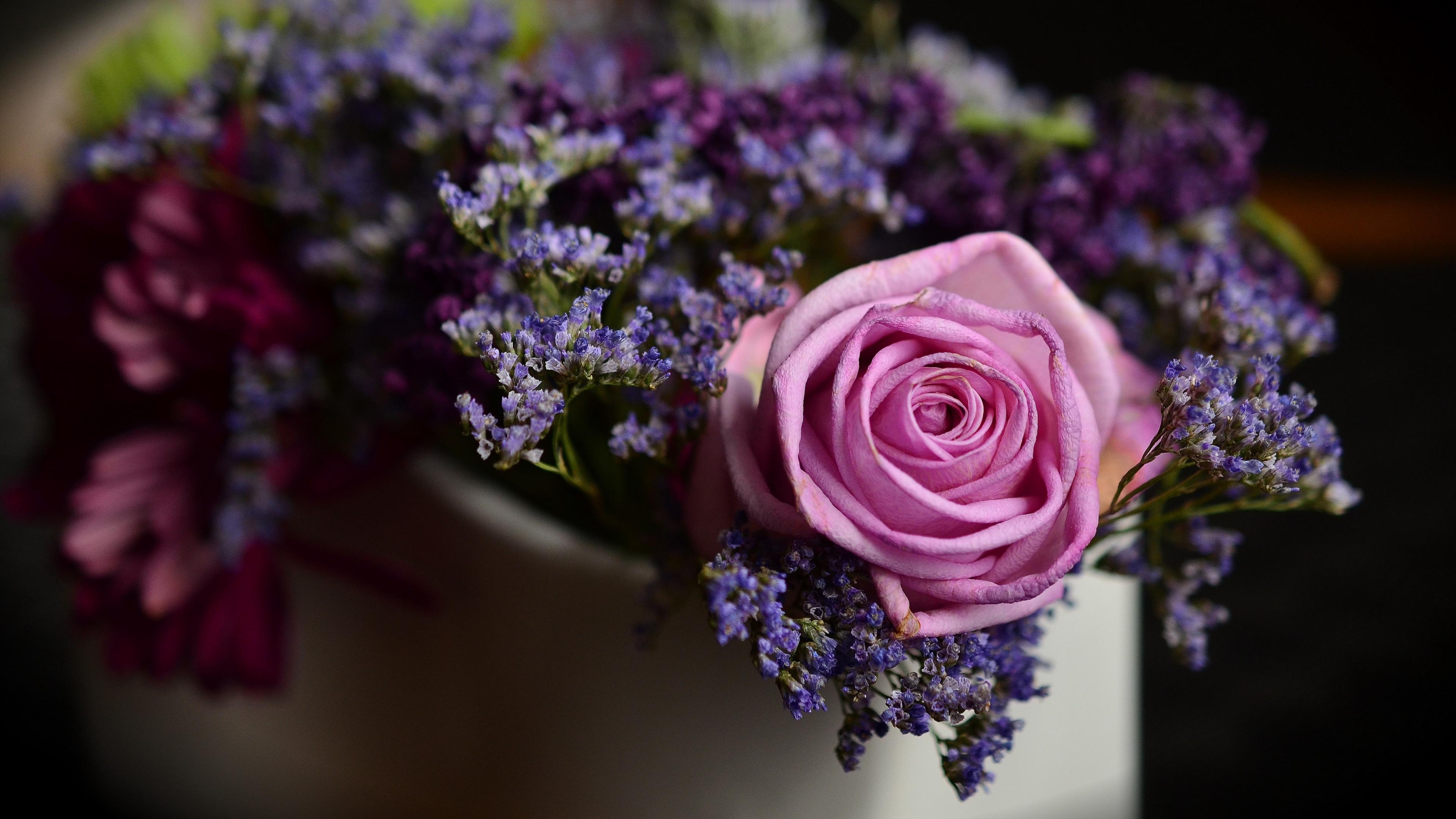 rose bouquet composition 4k 1540064744 - rose, bouquet, composition 4k - Rose, composition, Bouquet
