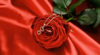 rose chain heart flower 4k 1540065037 200x110 - rose, chain, heart, flower 4k - Rose, Heart, chain