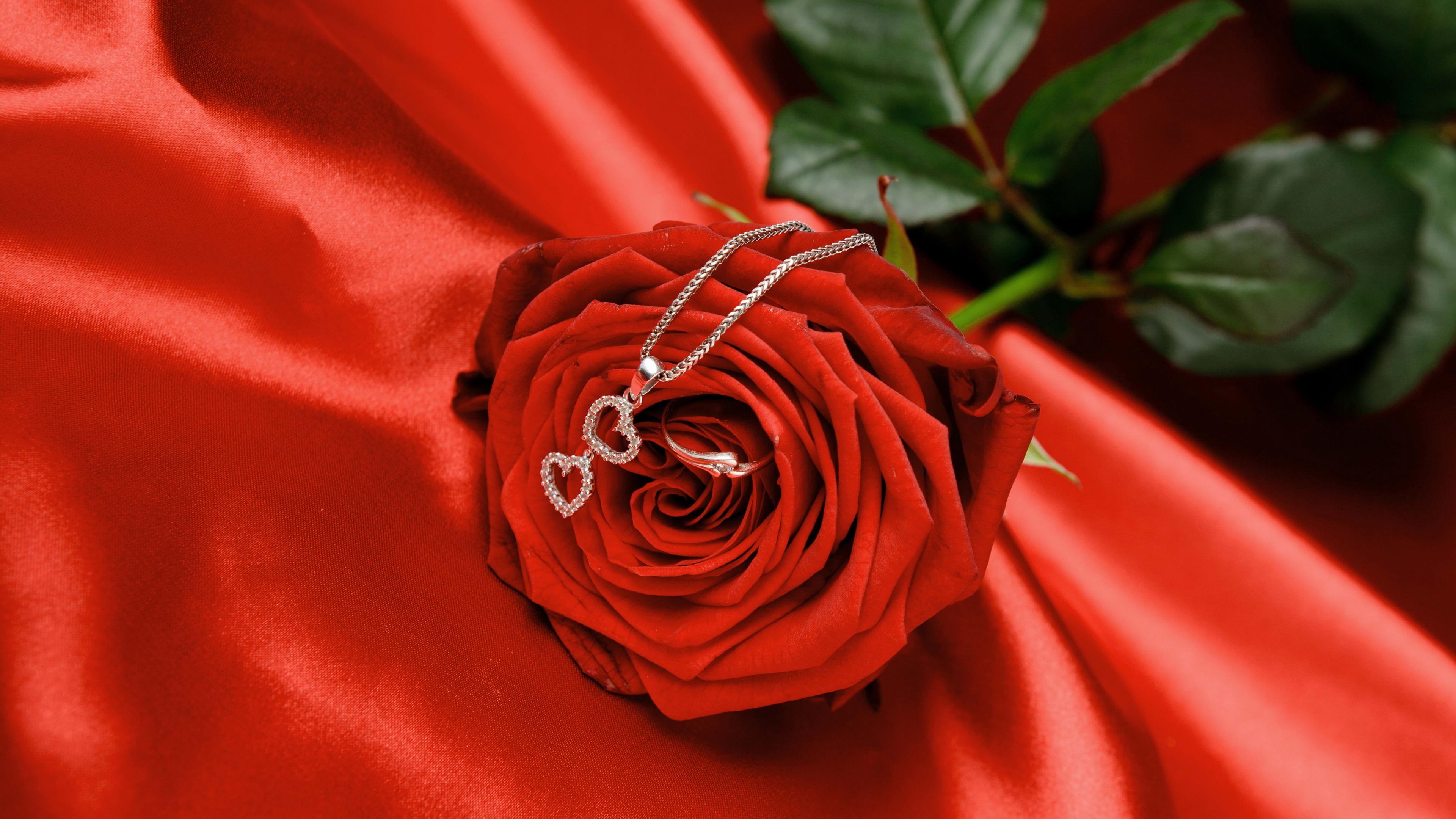 rose chain heart flower 4k 1540065037 - rose, chain, heart, flower 4k - Rose, Heart, chain