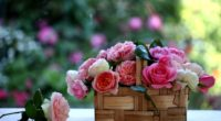 rose flowers buds basket blurring 4k 1540065054 200x110 - rose, flowers, buds, basket, blurring 4k - Rose, Flowers, Buds