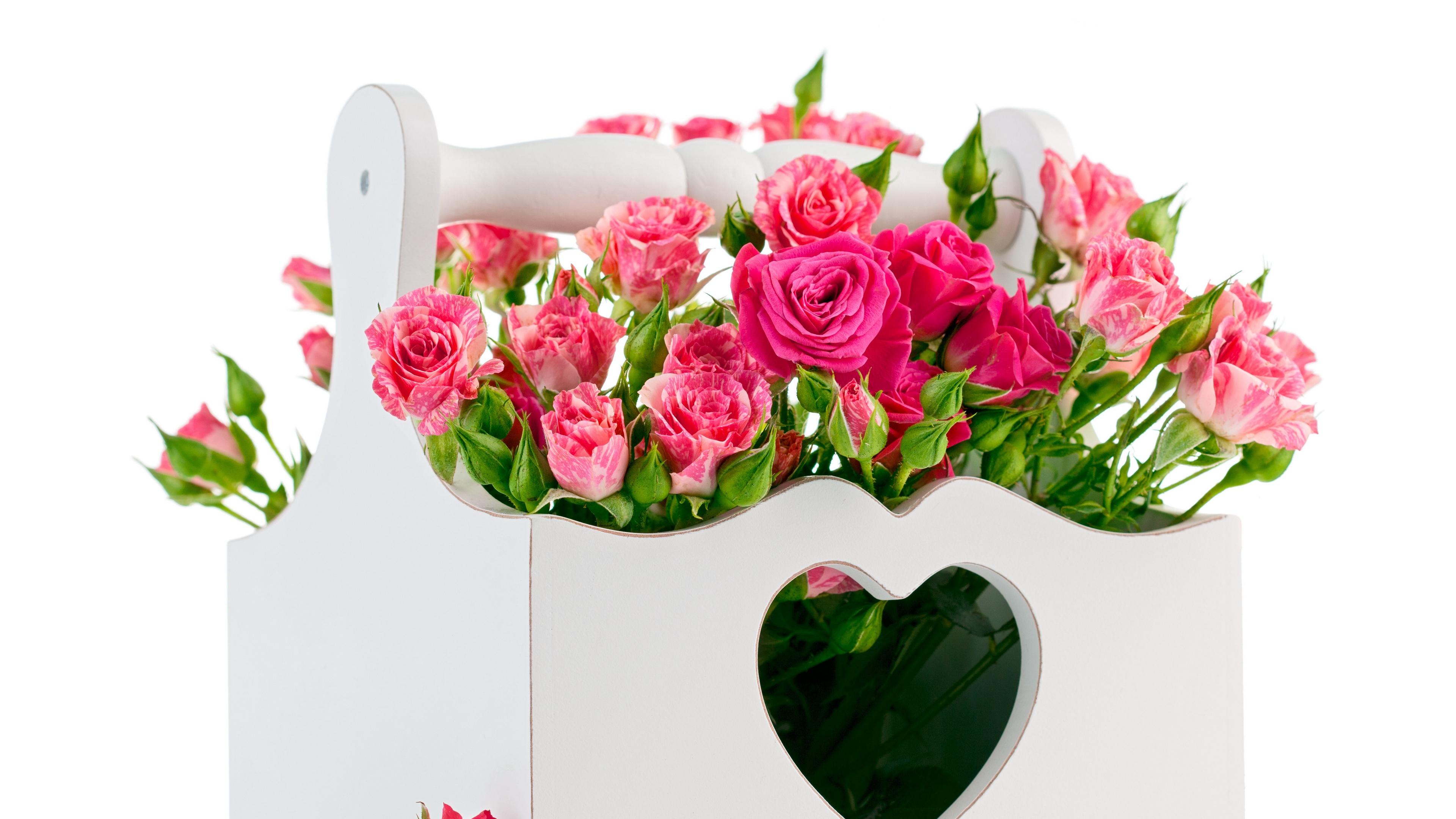 roses bouquets baskets unique design 4k 1540064958 - roses, bouquets, baskets, unique, design 4k - Roses, bouquets, baskets