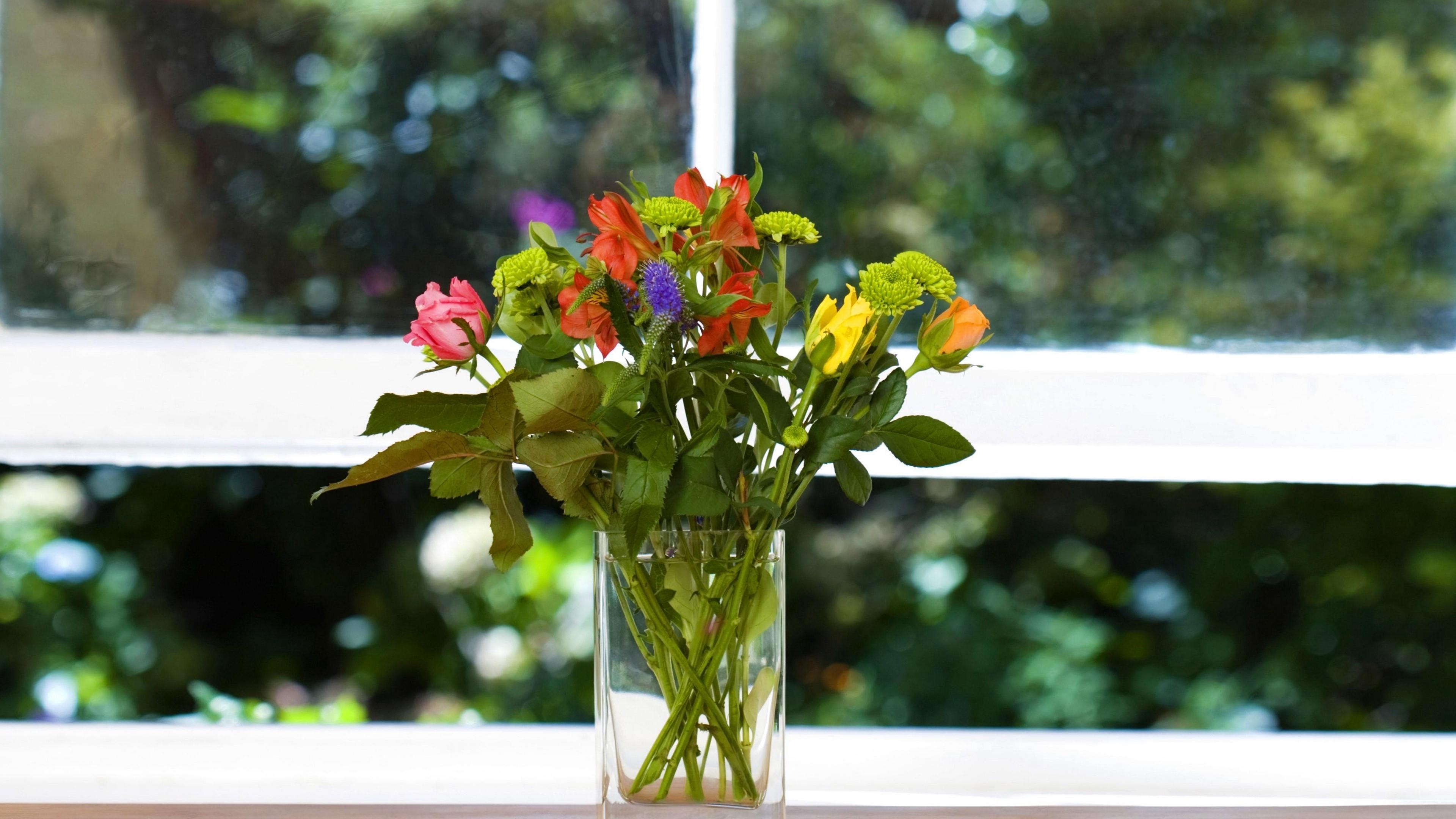 roses flowers small vase box 4k 1540064198 - roses, flowers, small, vase, box 4k - Small, Roses, Flowers