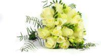 roses freesia bouquet decoration 4k 1540064291 200x110 - roses, freesia, bouquet, decoration 4k - Roses, freesia, Bouquet