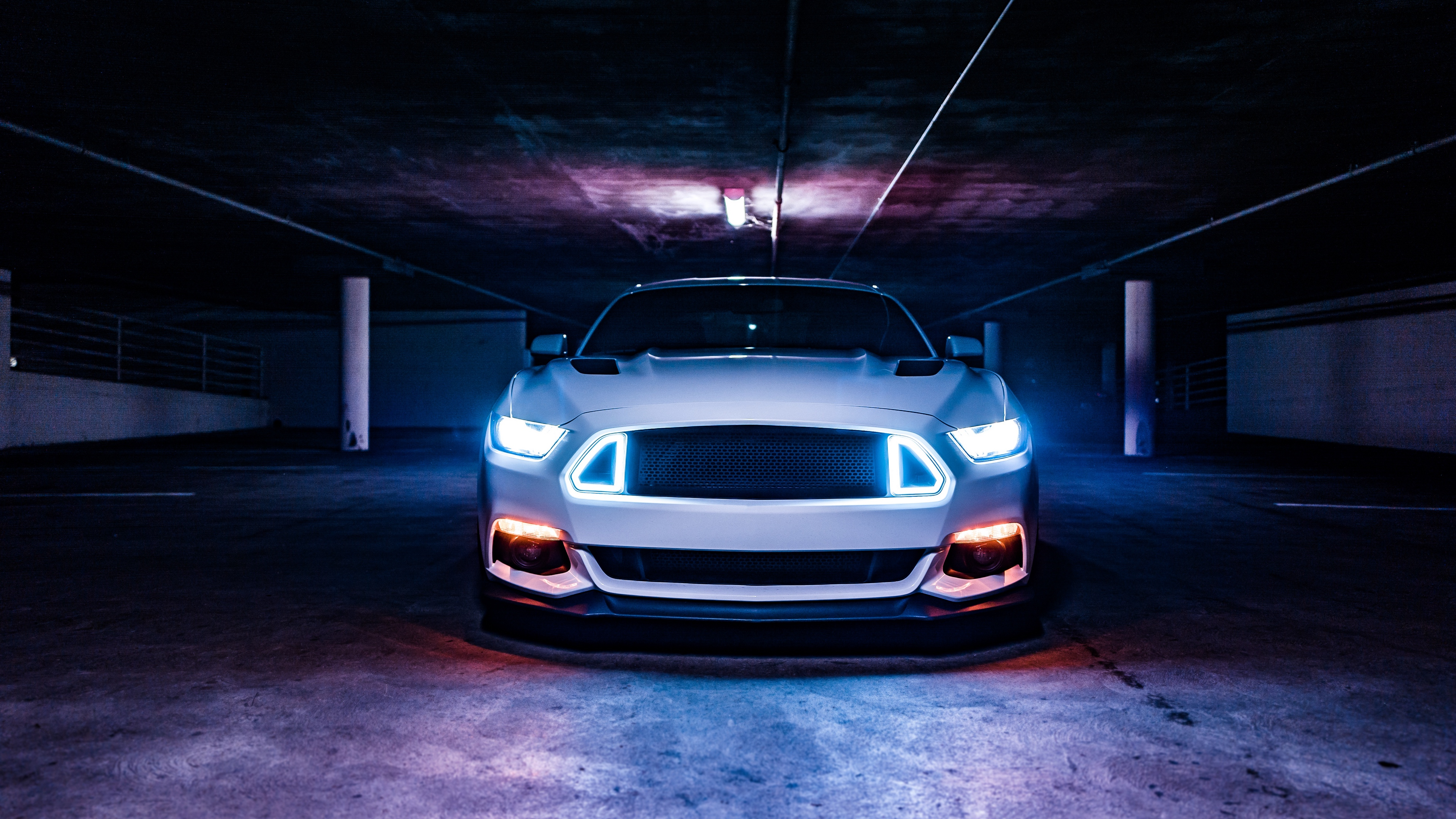 shelby mustang ford mustang ford sports car 4k 1538935199 - shelby mustang, ford mustang, ford, sports car 4k - shelby mustang, ford mustang, Ford