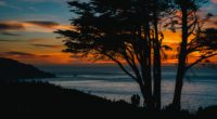 silhouettes sunset tree sea 4k 1540574730 200x110 - silhouettes, sunset, tree, sea 4k - tree, sunset, silhouettes