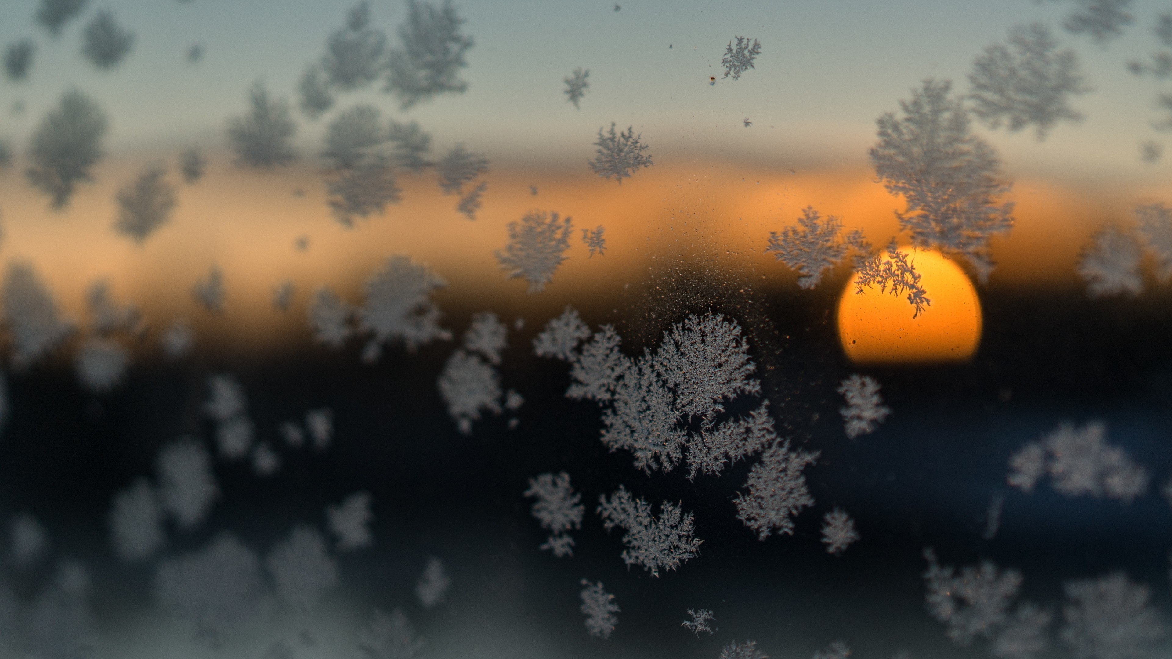 snow flakes sun blurred frost winter 4k 1540140135 - Snow Flakes Sun Blurred Frost Winter 4k - tree wallpapers, snowflakes wallpapers, snow wallpapers, nature wallpapers, hd-wallpapers, 5k wallpapers, 4k-wallpapers