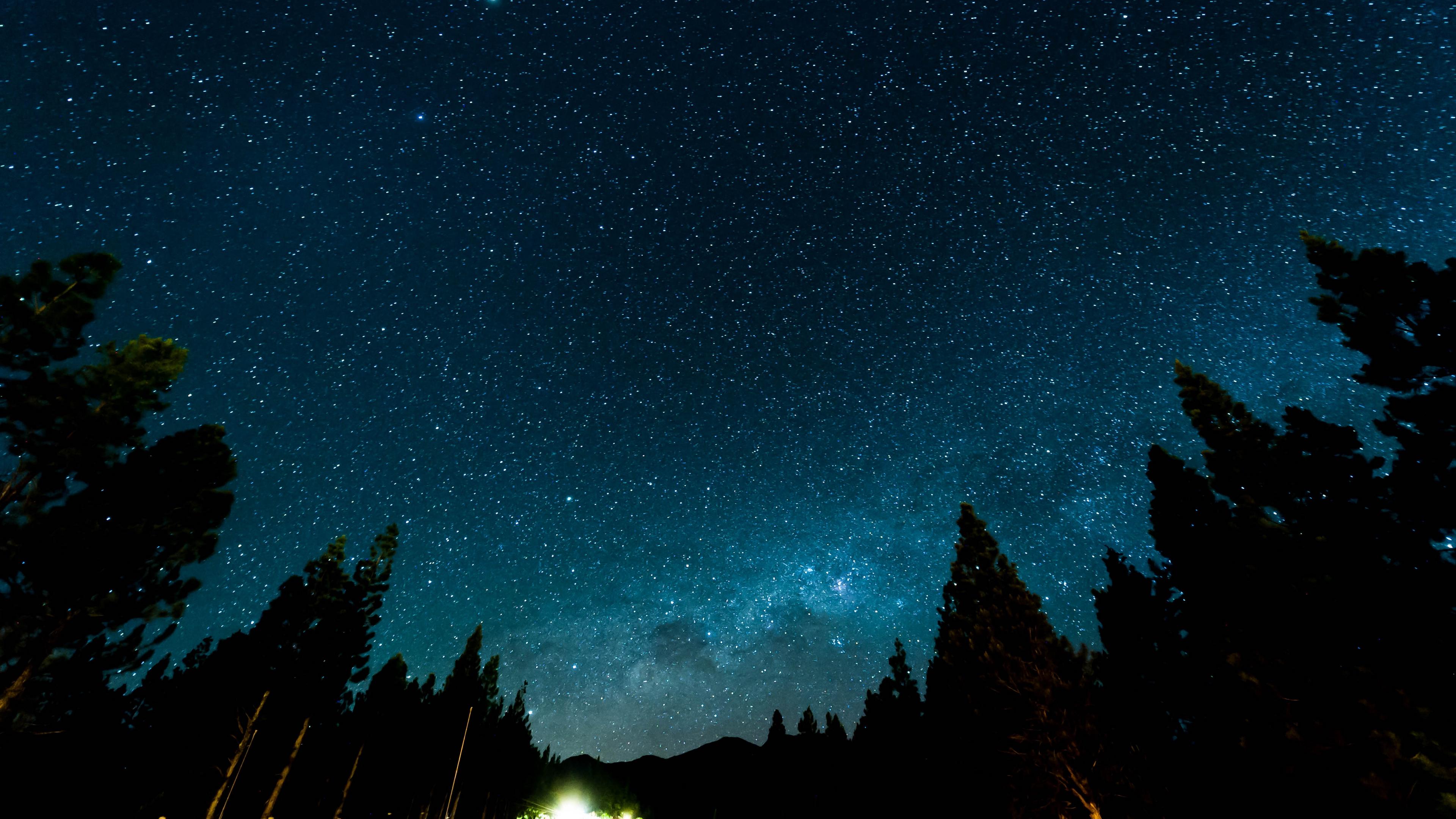 starry sky night stars forest nebula 4k 1540575372 - starry sky, night, stars, forest, nebula 4k - Stars, starry sky, Night