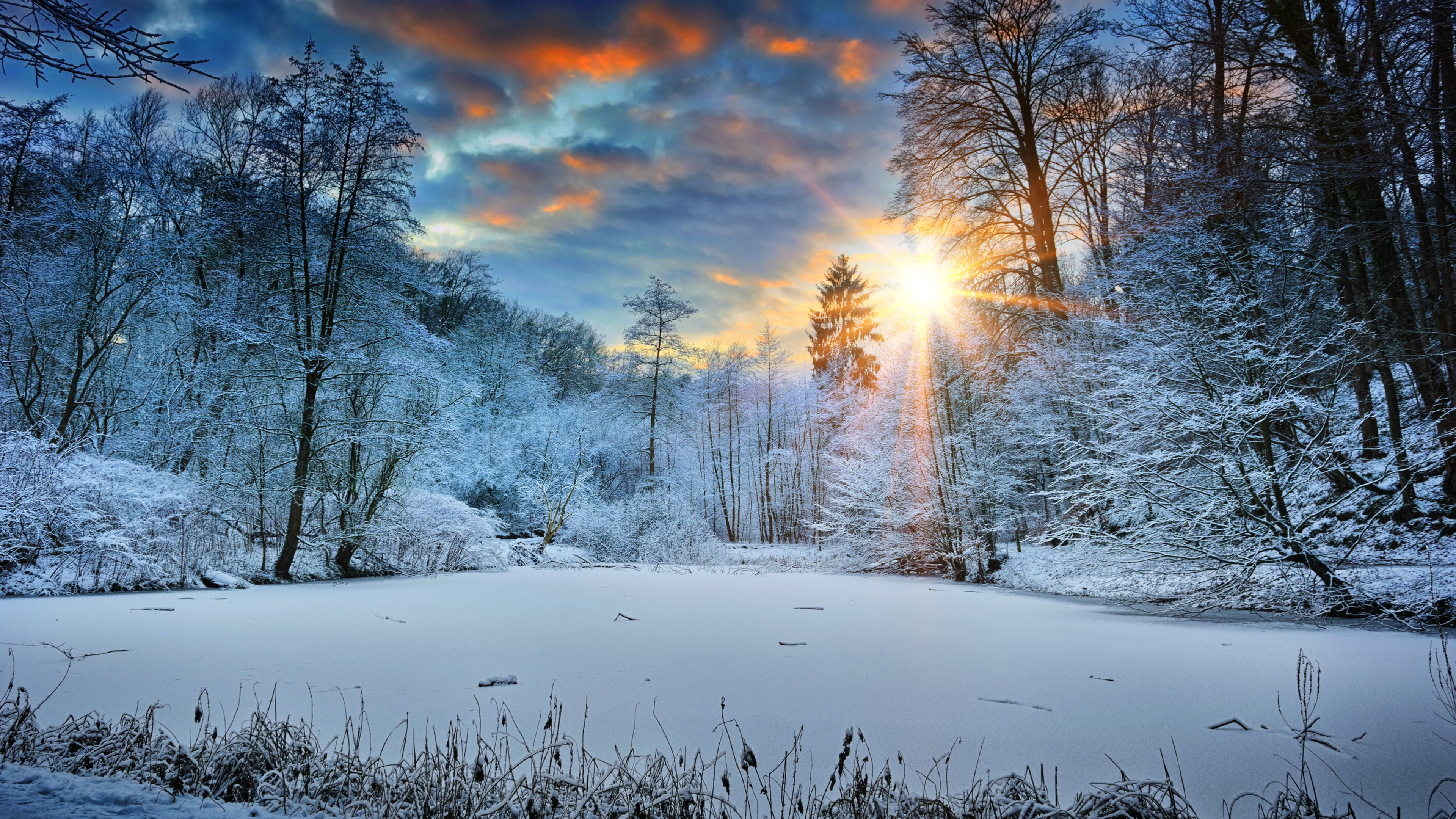 Wallpaper 4k Sunbeams Landscape Snow In Winter Trees 4k 4k Wallpapers Hd Wallpapers Landscape Wallpapers Nature Wallpapers Snow Wallpapers Sunbeam Wallpapers Trees Wallpapers Winter Wallpapers
