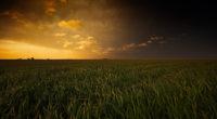 sunset fields 4k 1540132149 200x110 - Sunset Fields 4k - sunset wallpapers, nature wallpapers, fields wallpapers, 4k-wallpapers