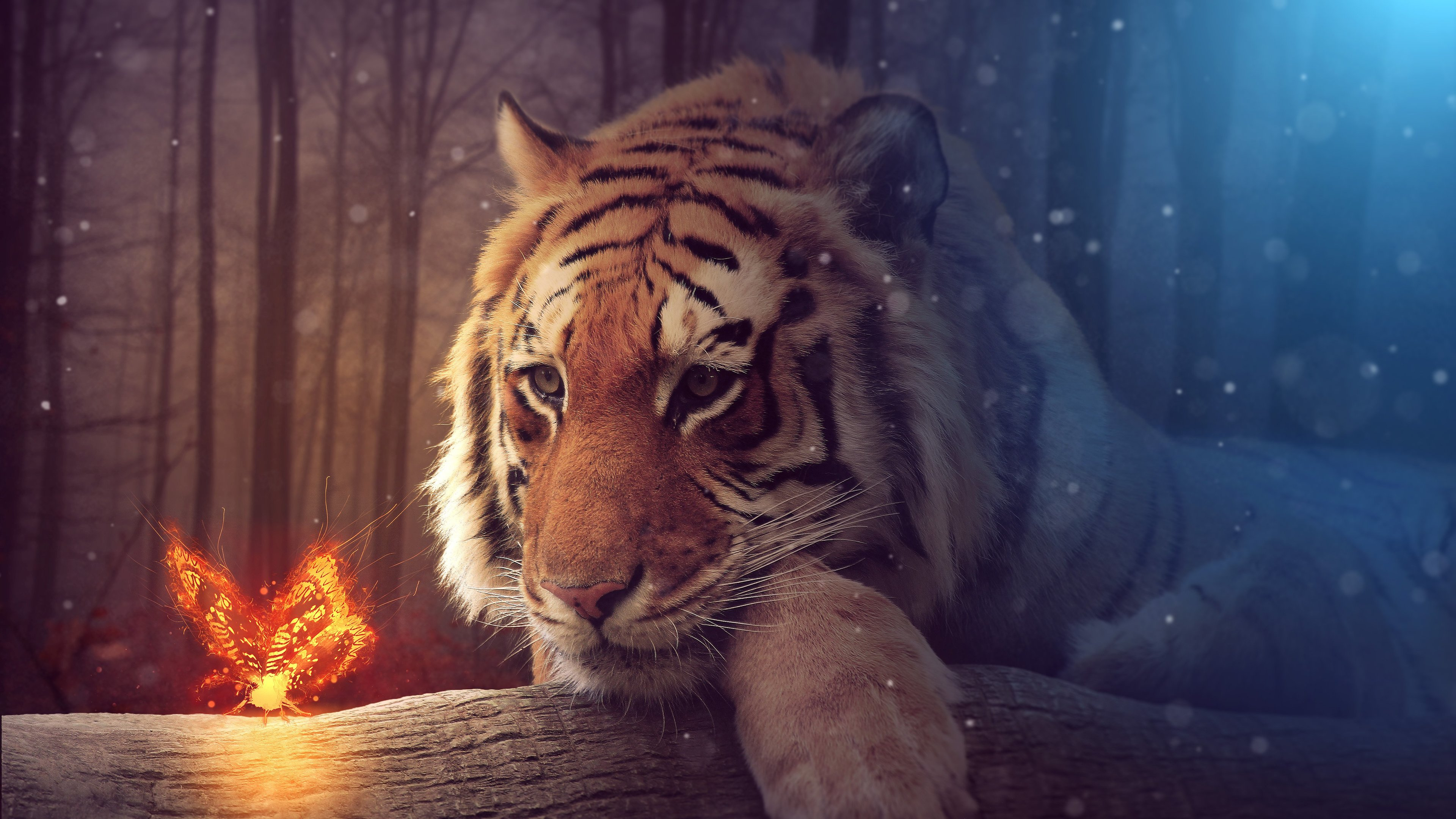 tiger dreamy art 4k 1540748626 - Tiger Dreamy Art 4k - tiger wallpapers, artist wallpapers, art wallpapers
