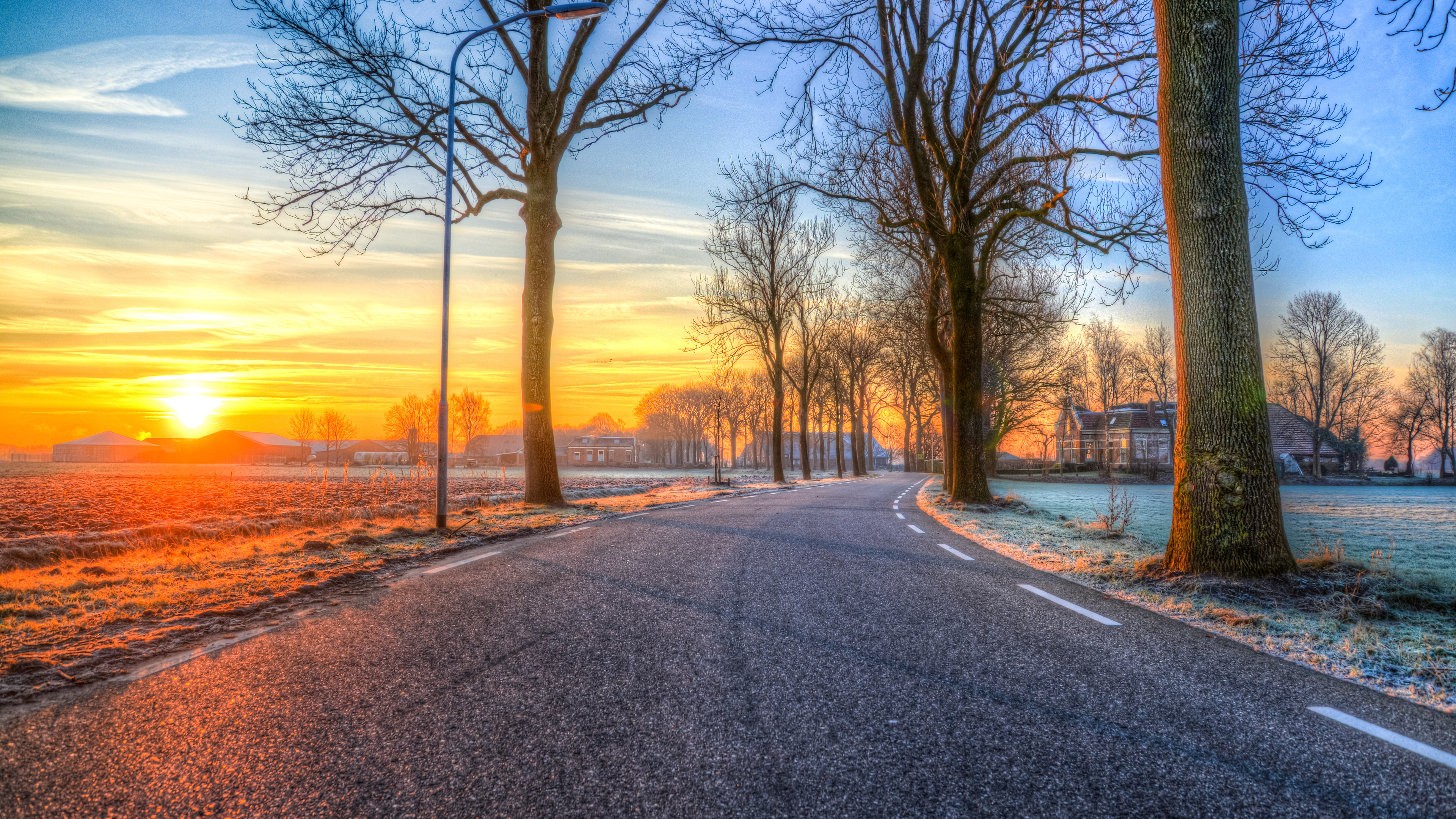 trees on road both side morning outdoors nature 5k 1540136549 - Trees On Road Both Side Morning Outdoors Nature 5k - outdoors wallpapers, nature wallpapers, morning wallpapers, hd-wallpapers, evening wallpapers, dusk wallpapers, dawn wallpapers, 5k wallpapers, 4k-wallpapers