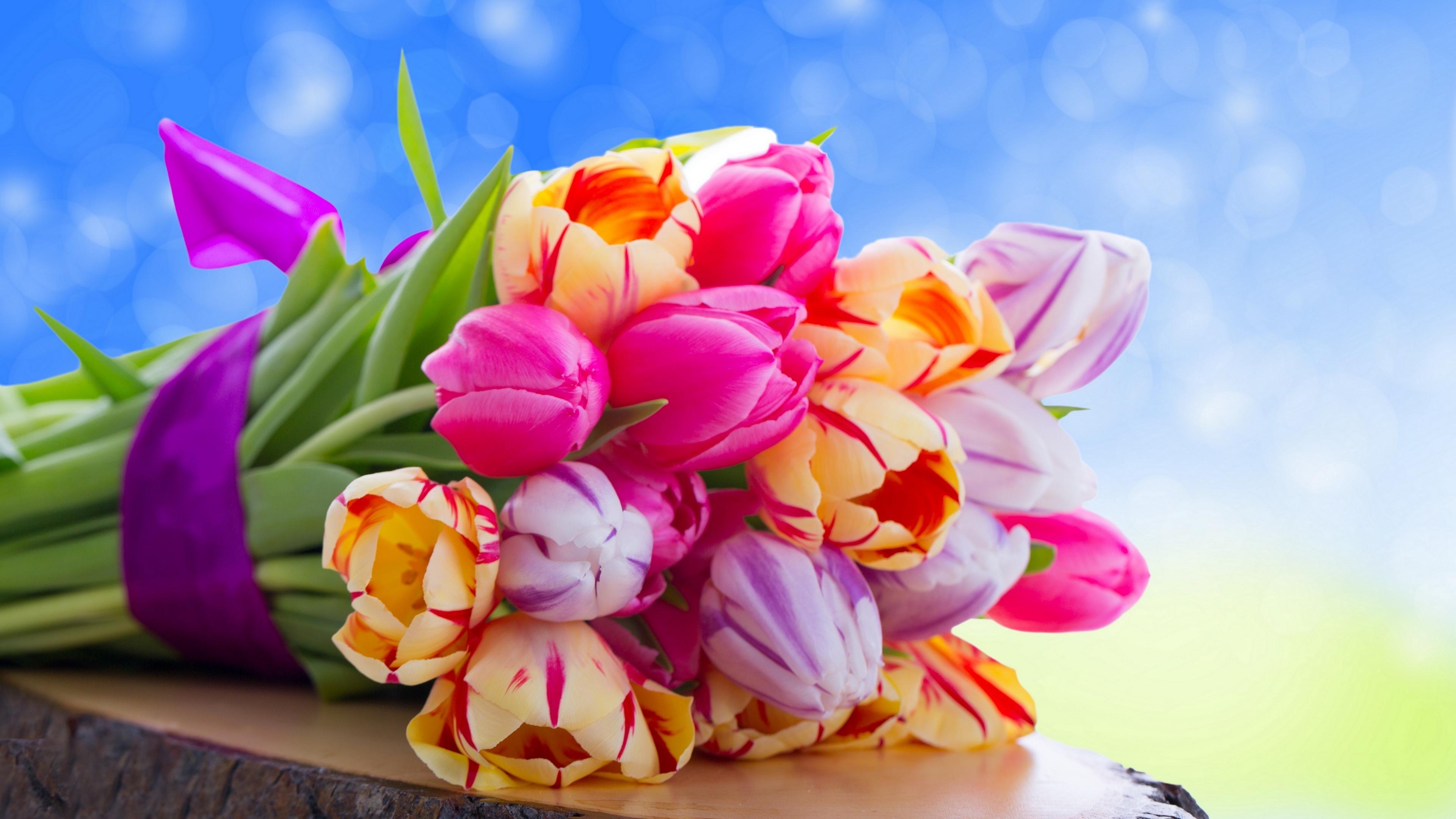 tulips flowers bouquet 4k 1540064795 - tulips, flowers, bouquet 4k - Tulips, Flowers, Bouquet