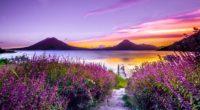 volcano sunset flower purple dreamy landscape 4k 5k 1540143449 200x110 - Volcano Sunset Flower Purple Dreamy Landscape 4k 5k - sunset wallpapers, mountains wallpapers, landscape wallpapers, hd-wallpapers, flowers wallpapers, dreamy wallpapers, 5k wallpapers, 4k-wallpapers