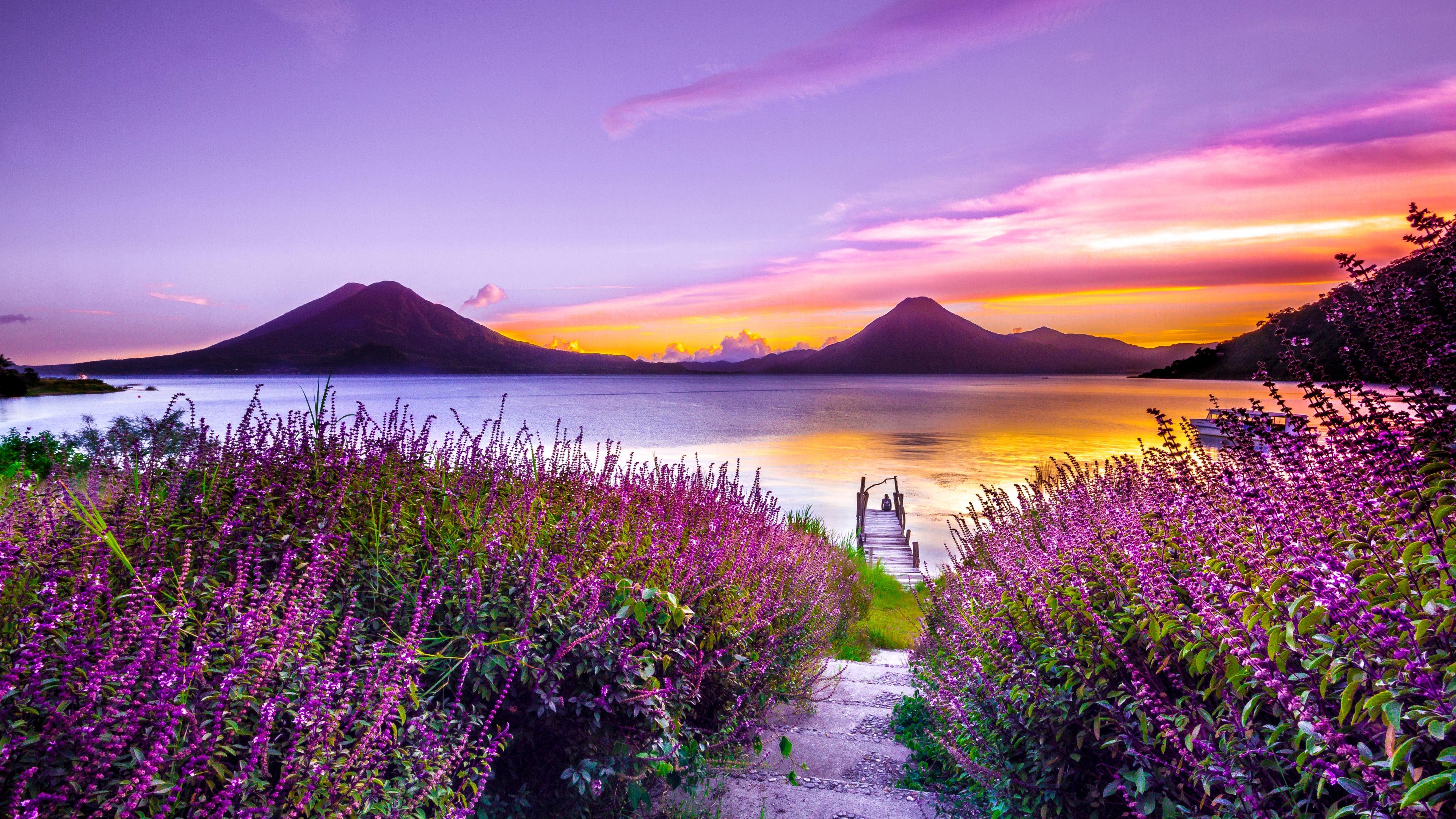 Wallpaper 4k Volcano Sunset Flower Purple Dreamy Landscape 4k 5k 4k Wallpapers 5k Wallpapers Dreamy Wallpapers Flowers Wallpapers Hd Wallpapers Landscape Wallpapers Mountains Wallpapers Sunset Wallpapers