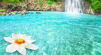 waterfall flowers 1540131342 200x110 - Waterfall Flowers - waterfall wallpapers, nature wallpapers, lotus wallpapers, flowers wallpapers