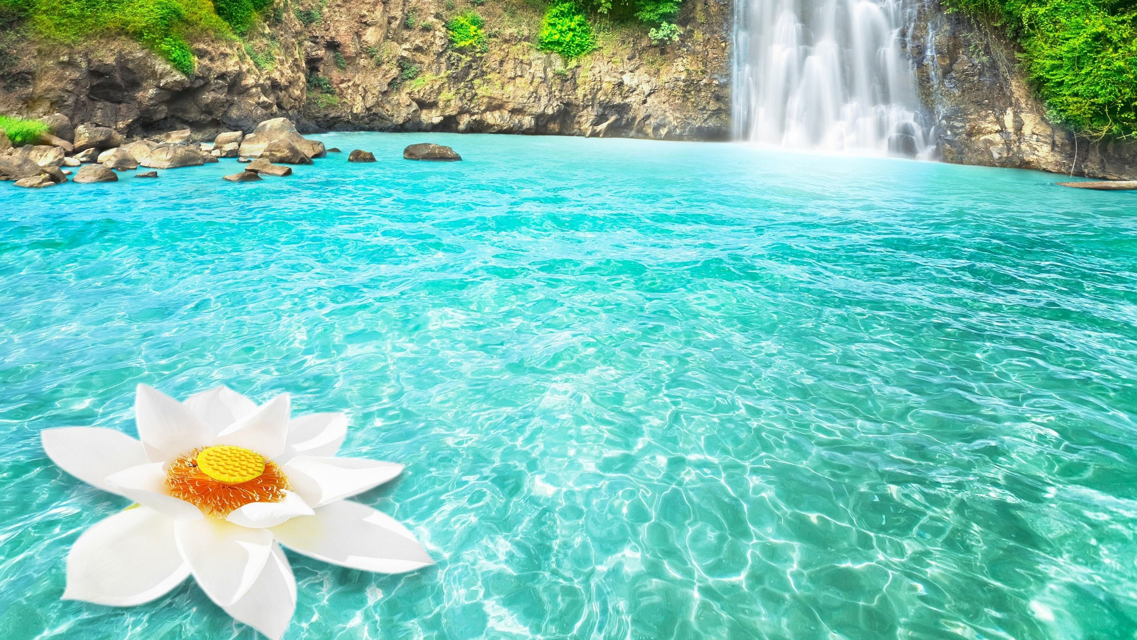 waterfall flowers 1540131342 - Waterfall Flowers - waterfall wallpapers, nature wallpapers, lotus wallpapers, flowers wallpapers