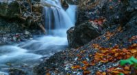 waterfall forest ultra hd 4k 1540134576 200x110 - Waterfall Forest Ultra Hd 4k - waterfall wallpapers, nature wallpapers, hd-wallpapers, forest wallpapers, 5k wallpapers, 4k-wallpapers