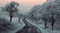 winter road snow frozen trees on sides 5k 1540143198 200x110 - Winter Road Snow Frozen Trees On Sides 5k - winter wallpapers, trees wallpapers, snow wallpapers, road wallpapers, nature wallpapers, hd-wallpapers, 5k wallpapers, 4k-wallpapers