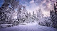 winter road snow trees white 4k 1540135669 200x110 - Winter Road Snow Trees White 4k - winter wallpapers, white wallpapers, trees wallpapers, snow wallpapers, road wallpapers, hd-wallpapers, 4k-wallpapers