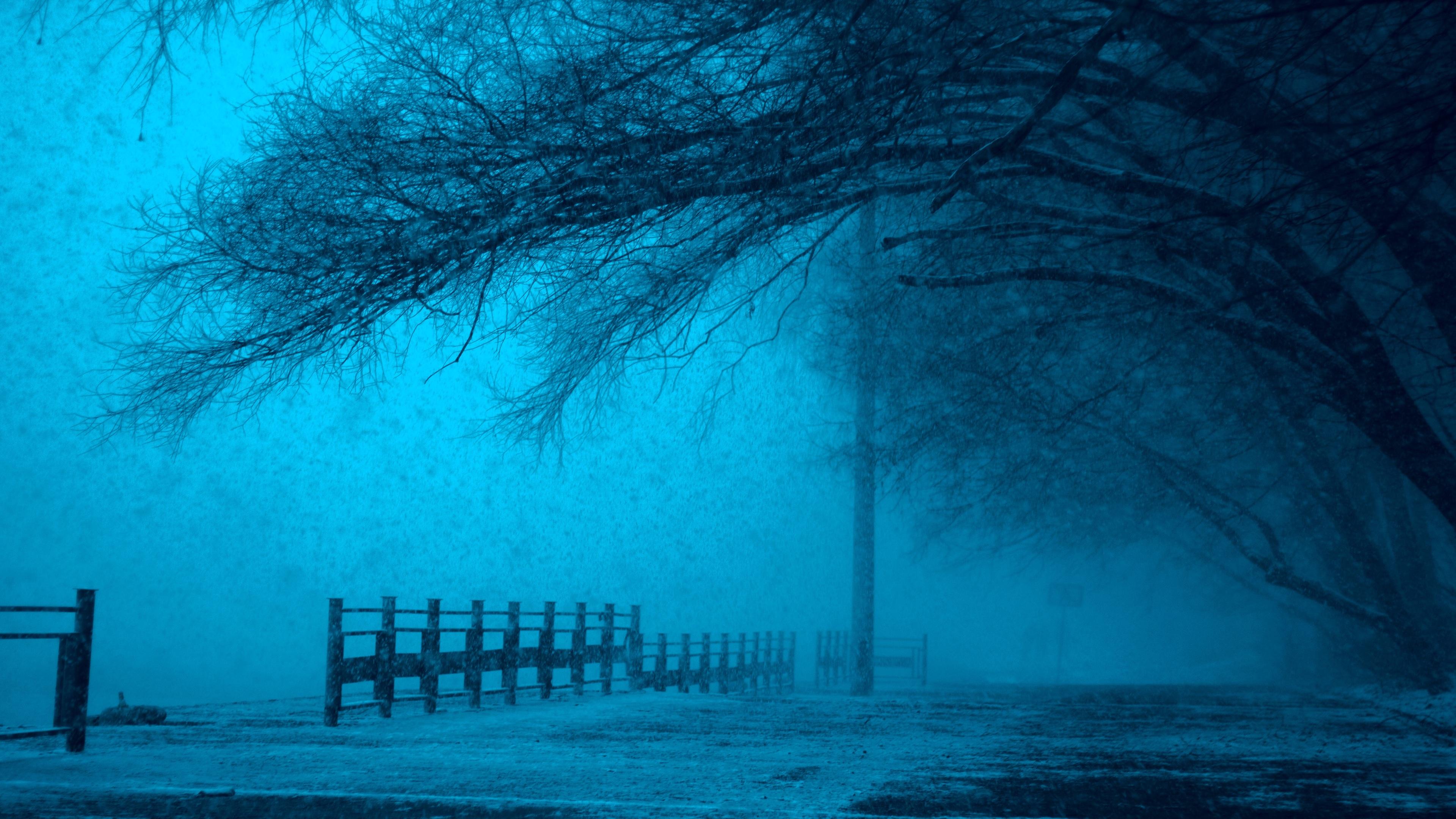 winter storm 4k 1540136450 - Winter Storm 4k - winter wallpapers, tree wallpapers, snow wallpapers, nature wallpapers, landscape wallpapers, hd-wallpapers, 5k wallpapers, 4k-wallpapers