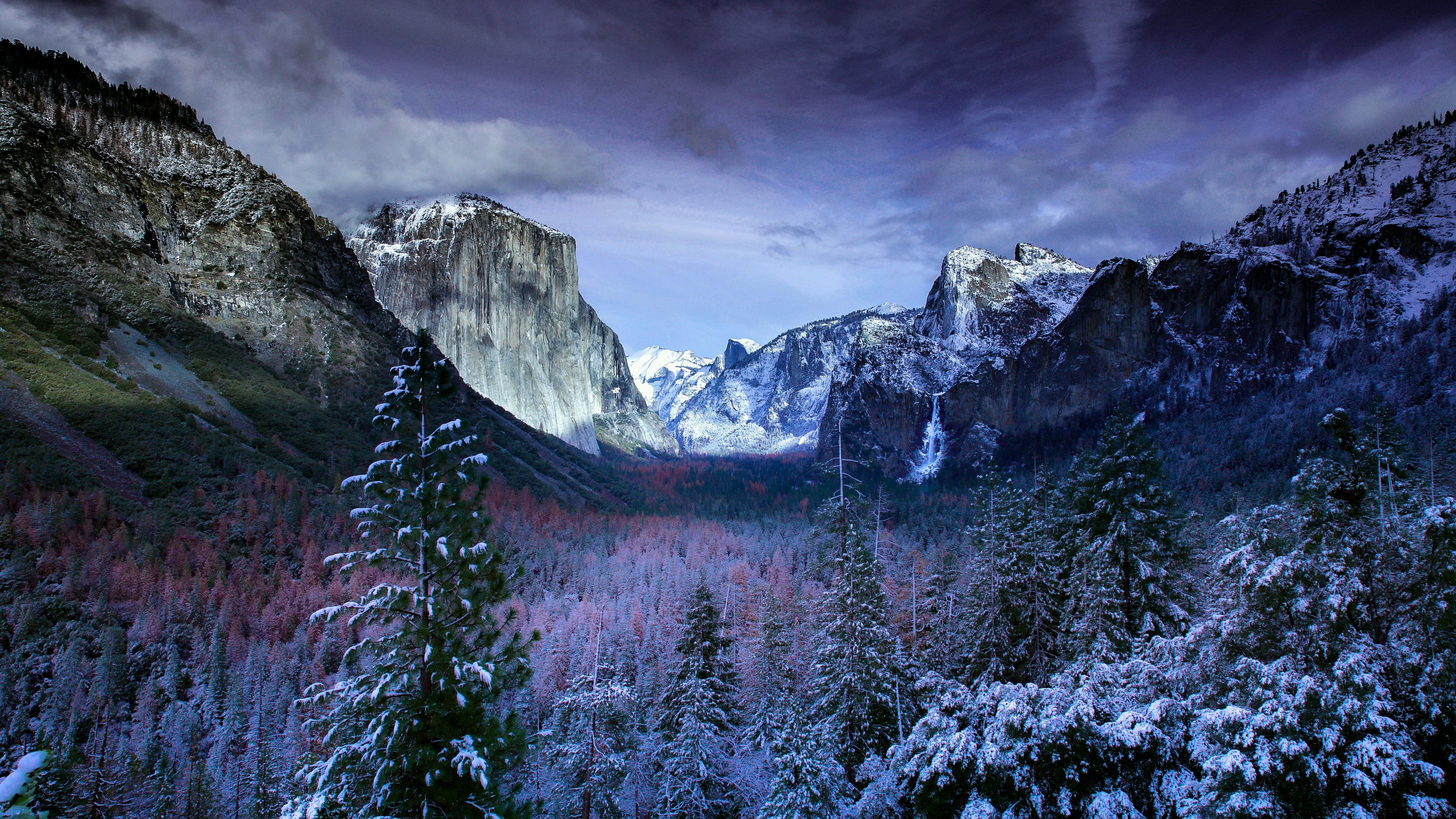 Wallpaper 4k Winter Trees Mountains 4k 4k Wallpapers 5k