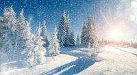 winter trees snow season 5k 1540133546 200x110 - Winter Trees Snow Season 5k - winter wallpapers, trees wallpapers, snow wallpapers, hd-wallpapers, 5k wallpapers, 4k-wallpapers