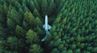 airplane trees top view 4k 1541115831 200x110 - airplane, trees, top view 4k - Trees, top view, Airplane