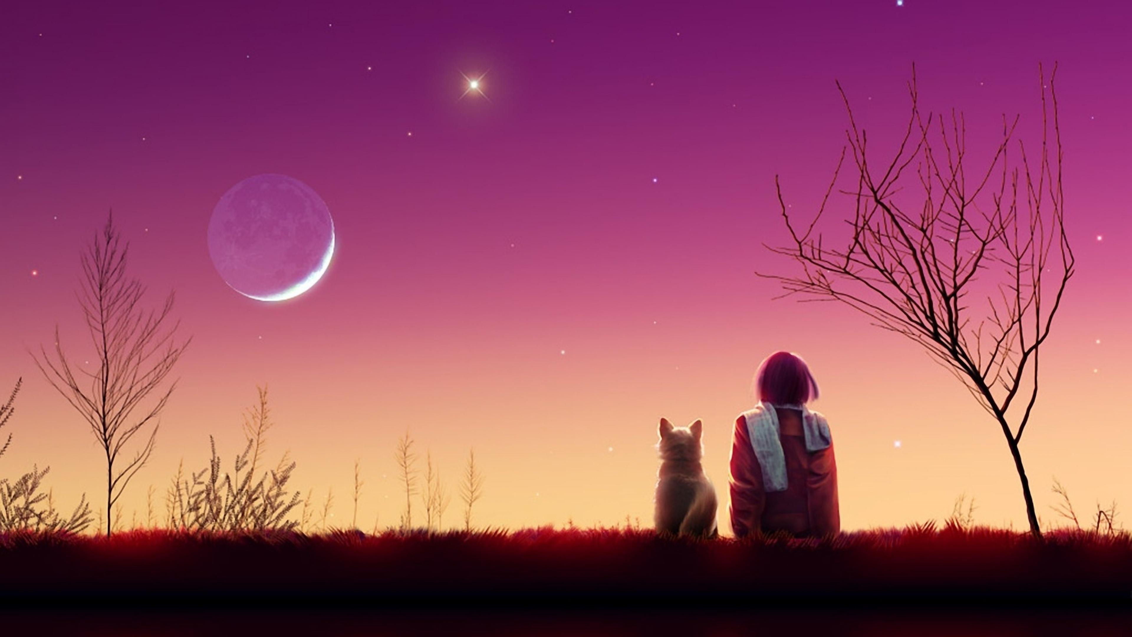 anime girl sunset 1541973533 - Anime Girl Sunset - cat wallpapers, anime wallpapers, anime girl wallpapers