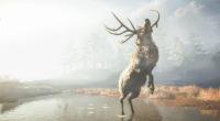 assassins creed odyssey reindeer 4k 1543621091 200x110 - Assassins Creed Odyssey Reindeer 4k - reindeer wallpapers, hd-wallpapers, games wallpapers, assassins creed wallpapers, assassins creed odyssey wallpapers, 4k-wallpapers, 2018 games wallpapers
