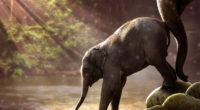 baby elephant drinking water 4k 1542238160 200x110 - Baby Elephant Drinking Water 4k - photography wallpapers, hd-wallpapers, elephant wallpapers, animals wallpapers, 5k wallpapers, 4k-wallpapers