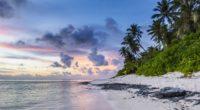 beach palms sand ocean 4k 1541115873 200x110 - beach, palms, sand, ocean 4k - Sand, palms, Beach