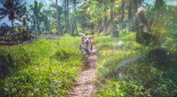 beagle dog in joy 4k 1542239638 200x110 - Beagle Dog In Joy 4k - hd-wallpapers, dog wallpapers, beagle wallpapers, animals wallpapers, 4k-wallpapers