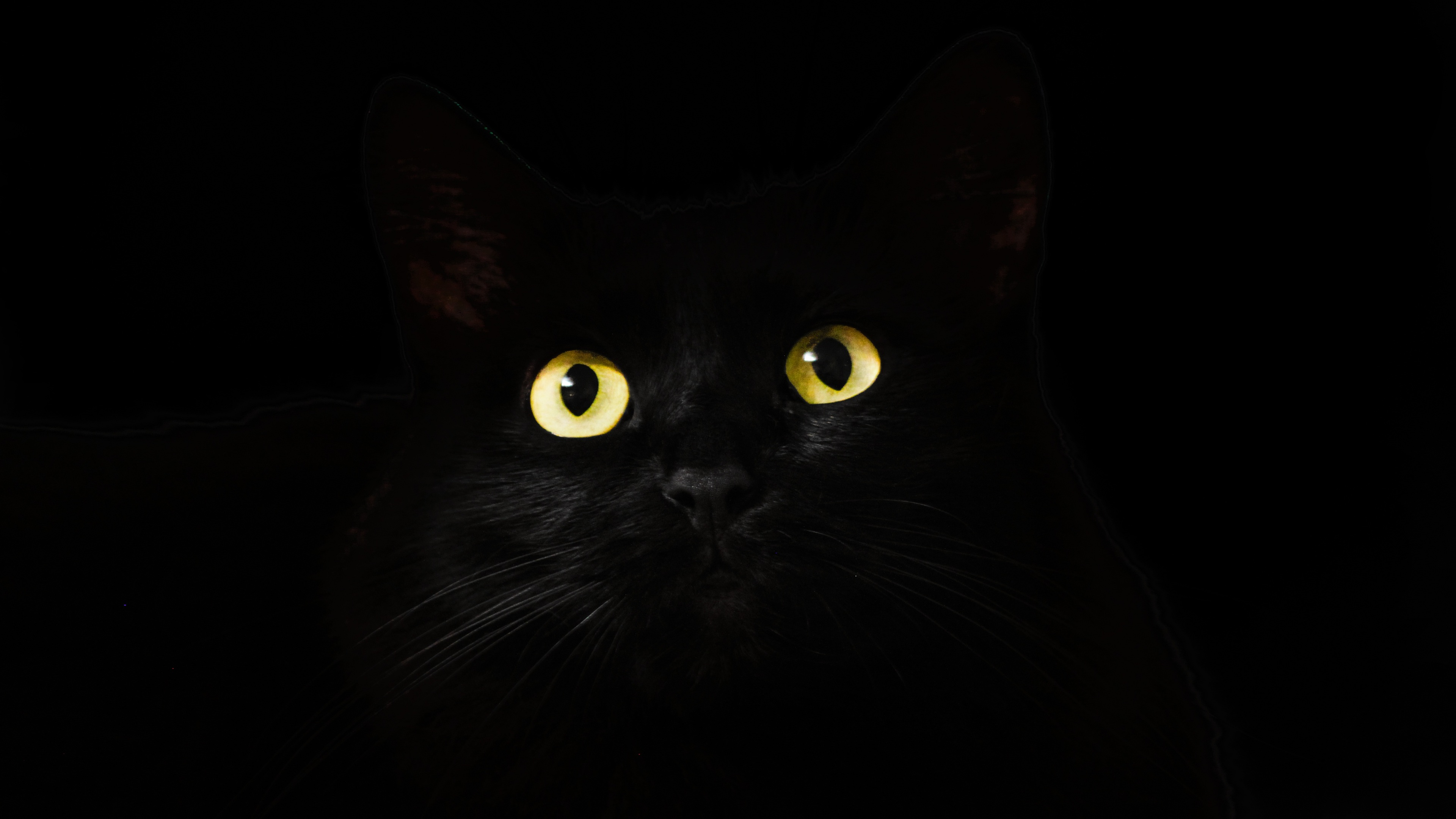 black cat eyes dark 4k 1542238611 - Black Cat Eyes Dark 4k - hd-wallpapers, eyes wallpapers, cat wallpapers, animals wallpapers, 4k-wallpapers