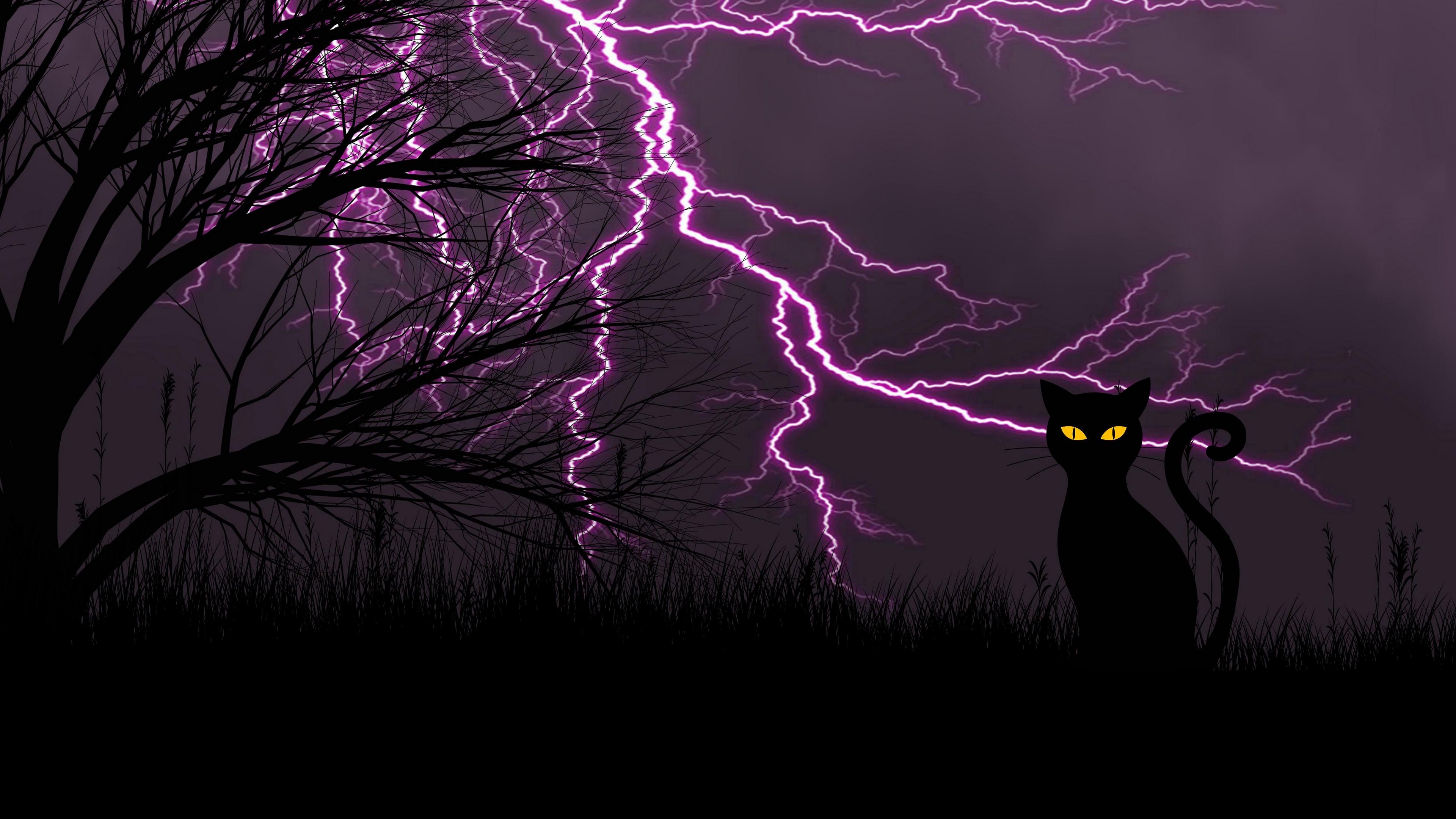 black cat lightning art grass night 4k 1541971587 - black cat, lightning, art, grass, night 4k - Lightning, black cat, art