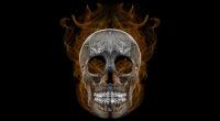blend skull vector illustration 1541970925 200x110 - Blend Skull Vector Illustration - skull wallpapers, illustration wallpapers, hd-wallpapers, digital art wallpapers, behance wallpapers, artwork wallpapers, 4k-wallpapers