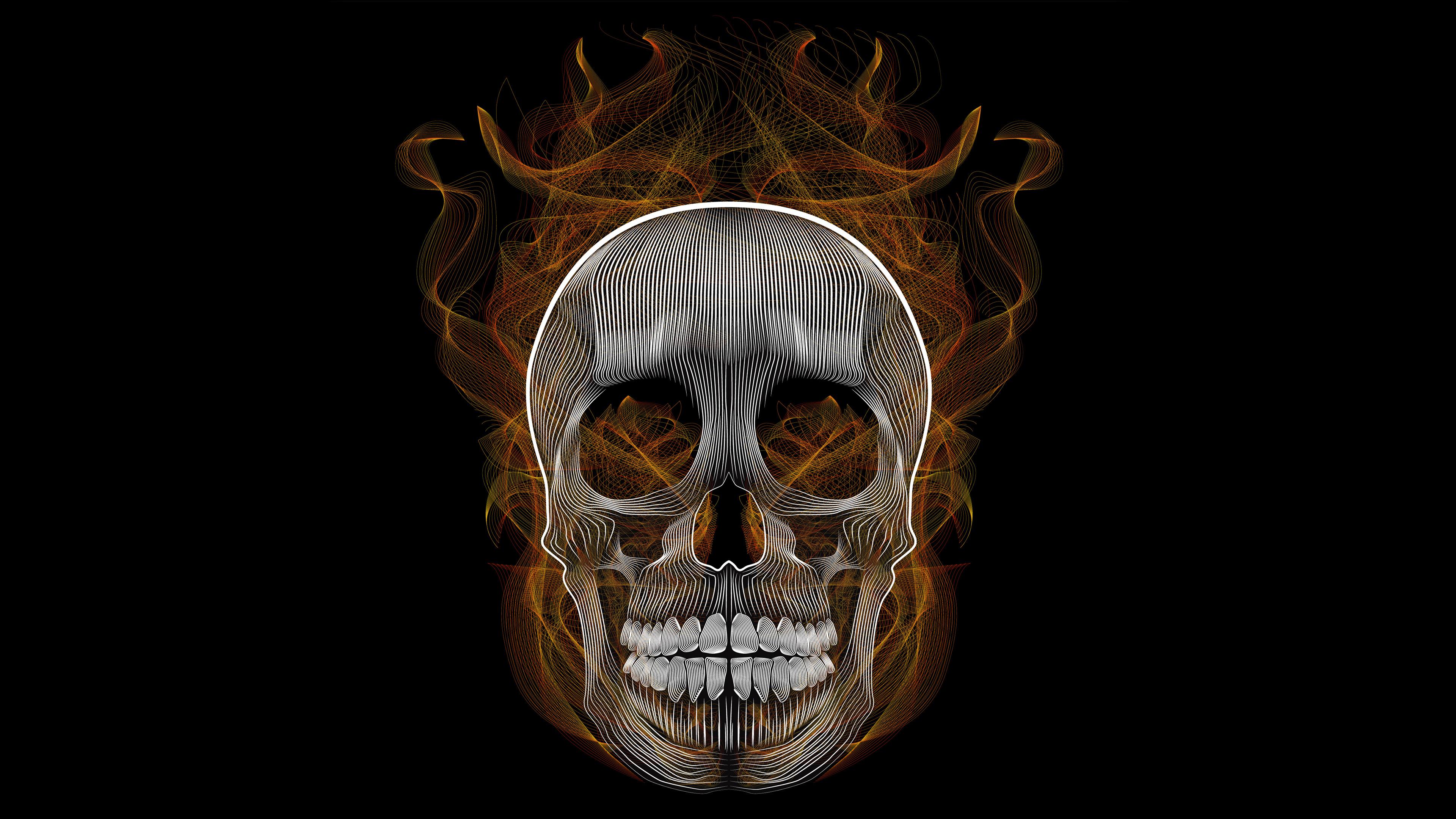 blend skull vector illustration 1541970925 - Blend Skull Vector Illustration - skull wallpapers, illustration wallpapers, hd-wallpapers, digital art wallpapers, behance wallpapers, artwork wallpapers, 4k-wallpapers