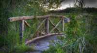 bridge plants grass landscape 4k 1541116105 200x110 - bridge, plants, grass, landscape 4k - plants, Grass, bridge
