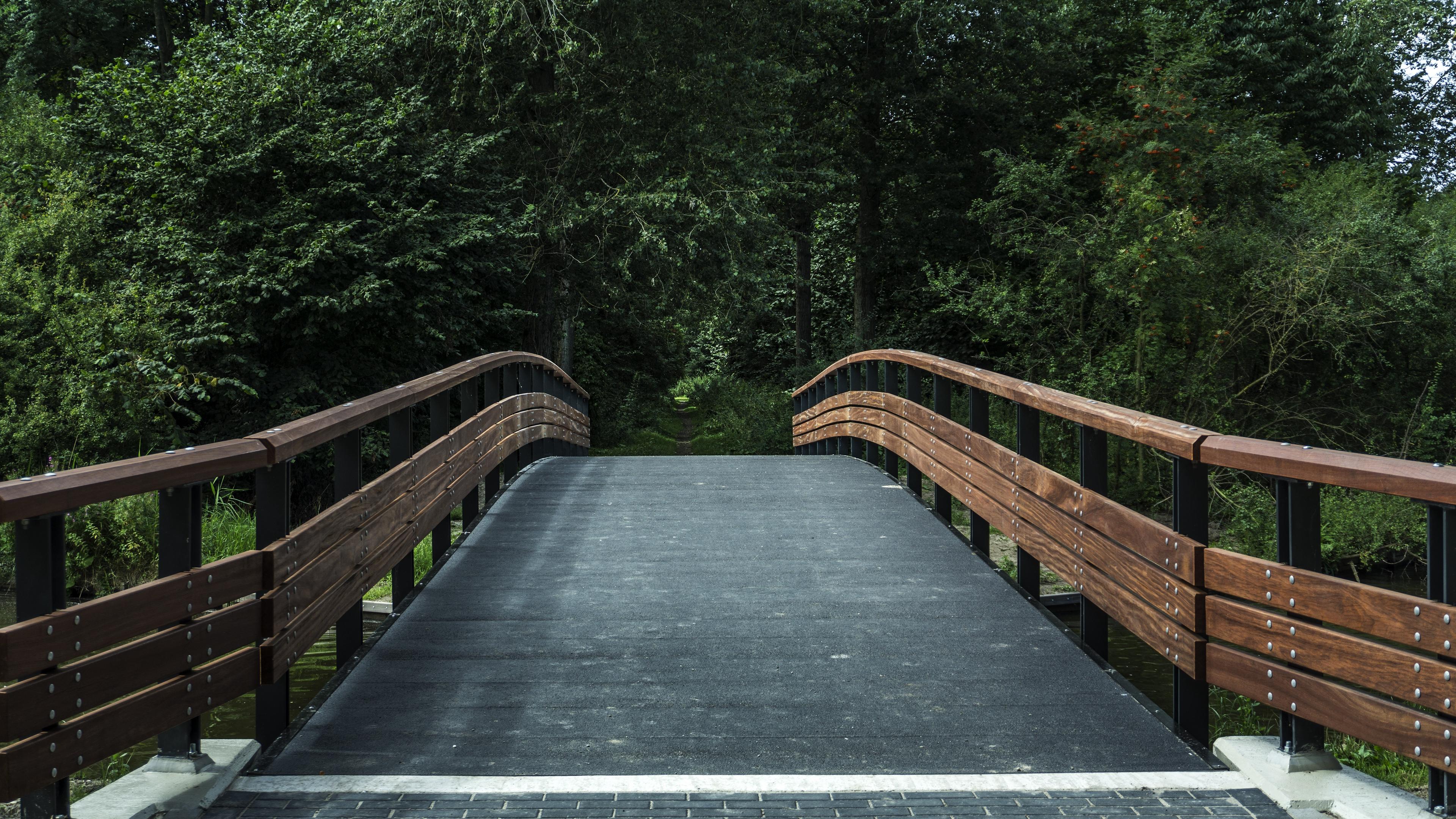 bridge trees forest park 4k 1541116662 - bridge, trees, forest, park 4k - Trees, Forest, bridge