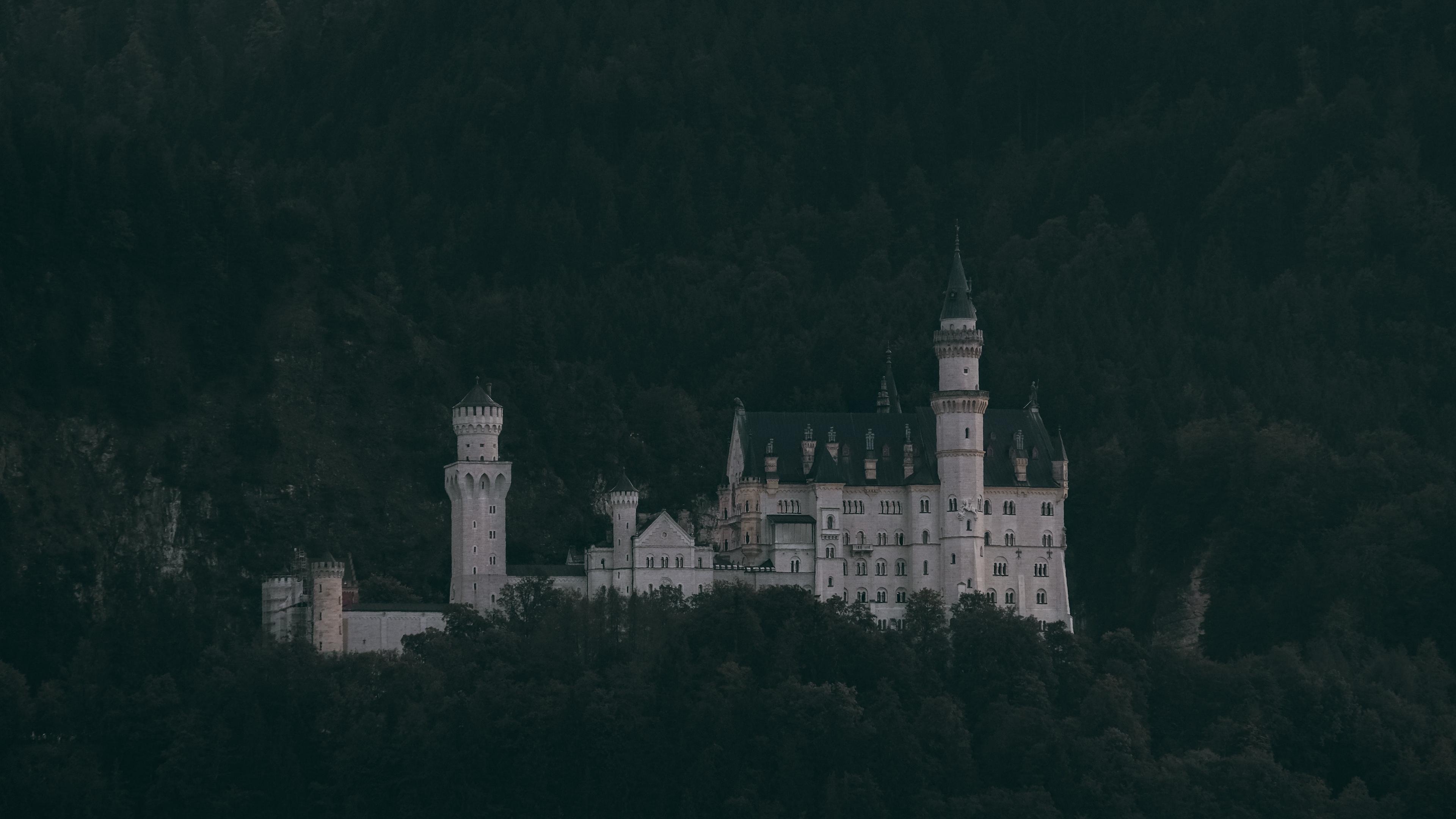 castle trees neuschwanstein castle forest mountains schwangau germany 4k 1541113681 - castle, trees, neuschwanstein castle, forest, mountains, schwangau, germany 4k - Trees, neuschwanstein castle, Castle