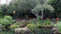 china pavilion pond park pond landscape 4k 1541115843 200x110 - china, pavilion pond, park, pond, landscape 4k - pavilion pond, Park, China
