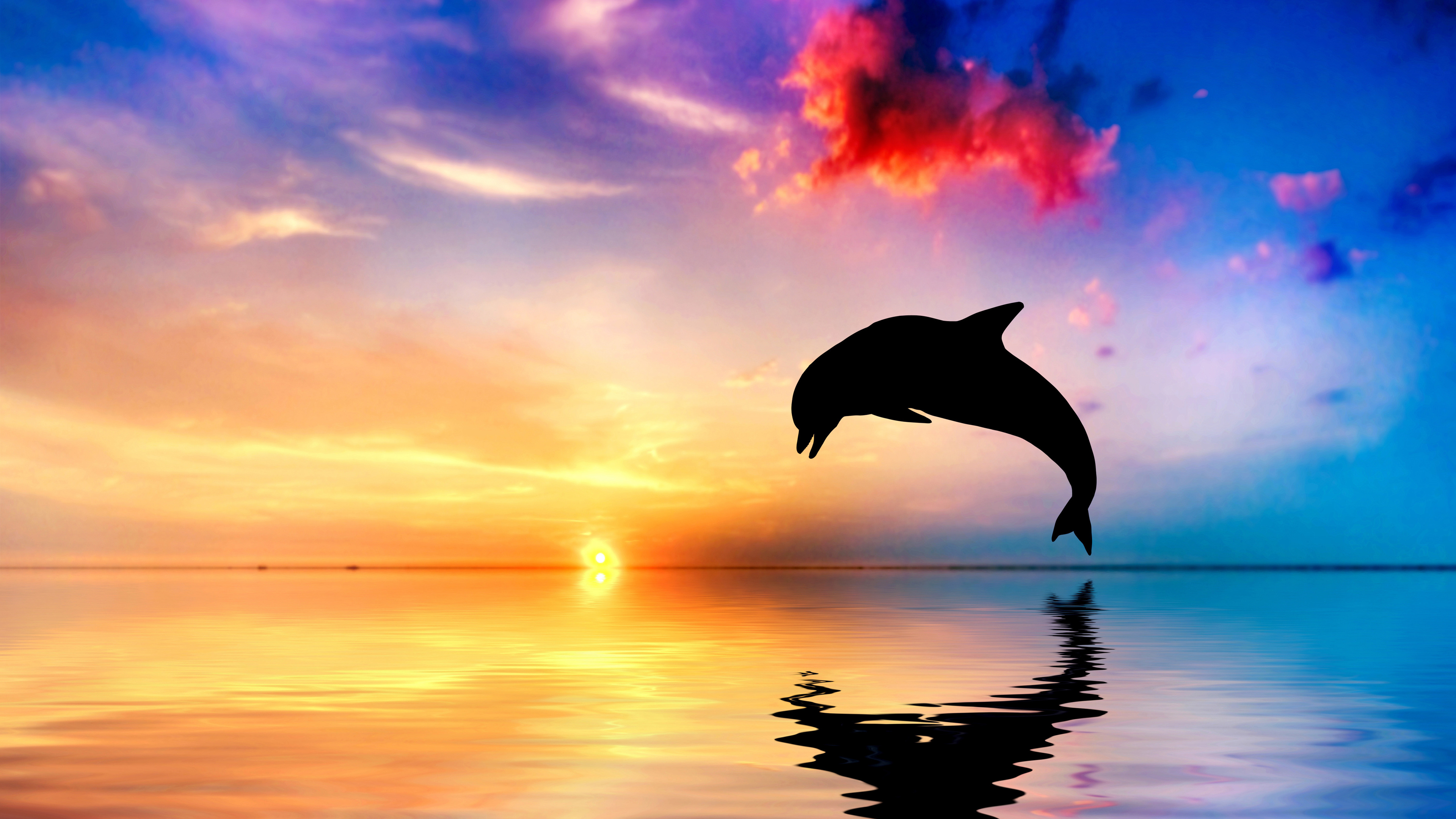 dolphin jumping out of water sunset view 4k 1542238884 - Dolphin Jumping Out Of Water Sunset View 4k - sunset wallpapers, ocean wallpapers, jump wallpapers, hd-wallpapers, fish wallpapers, dolphin wallpapers, 4k-wallpapers