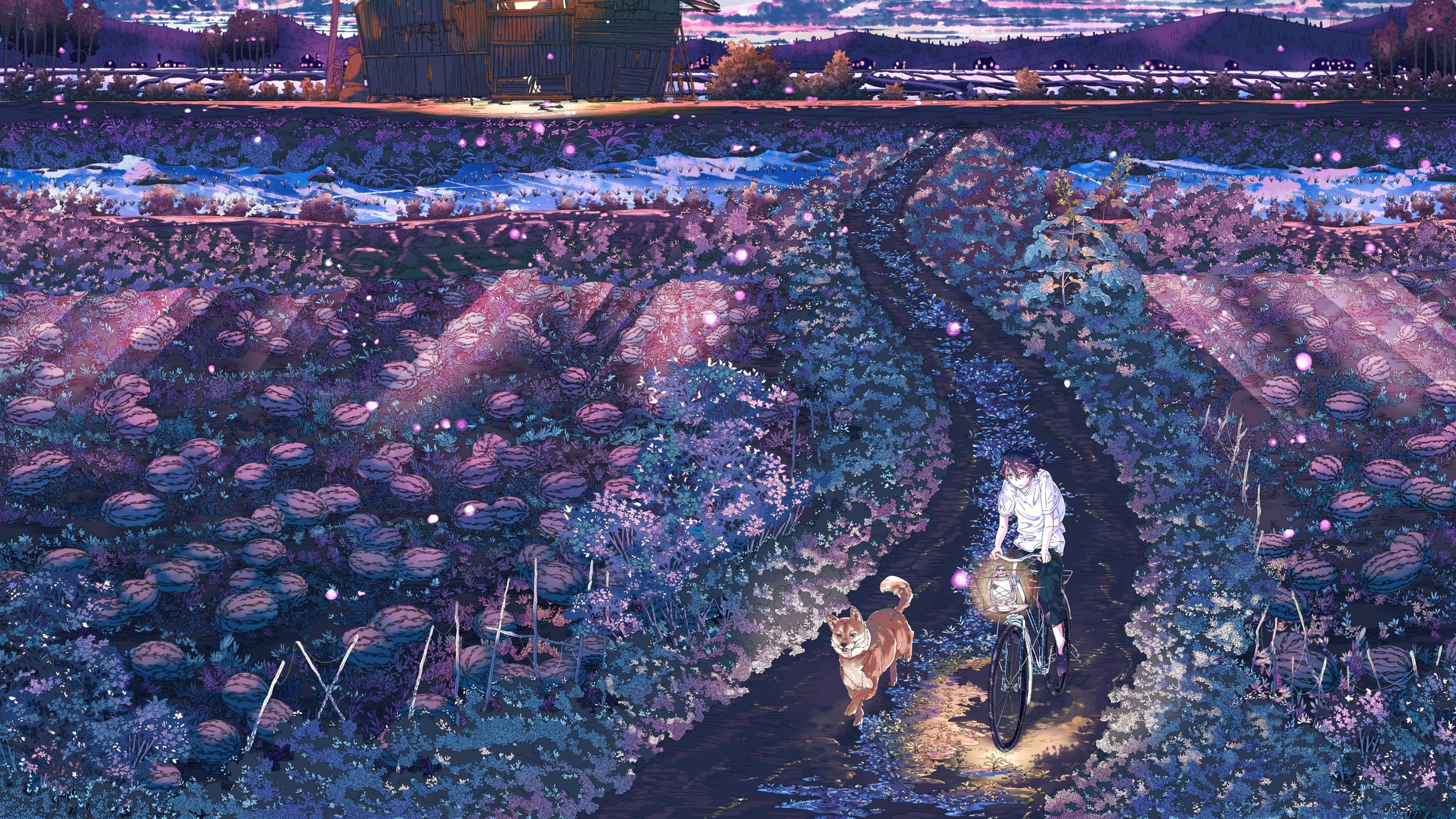 field night anime 1541973543 - Field Night Anime - night wallpapers, lights wallpapers, field wallpapers, anime wallpapers