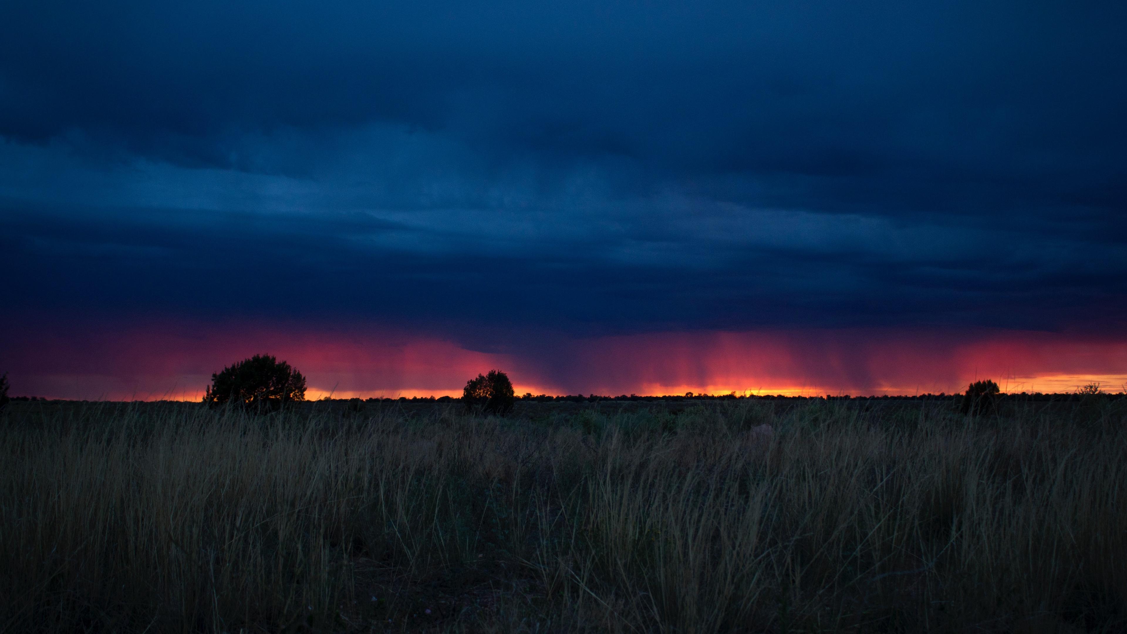 field sunset grass clouds 4k 1541116583 - field, sunset, grass, clouds 4k - sunset, Grass, Field