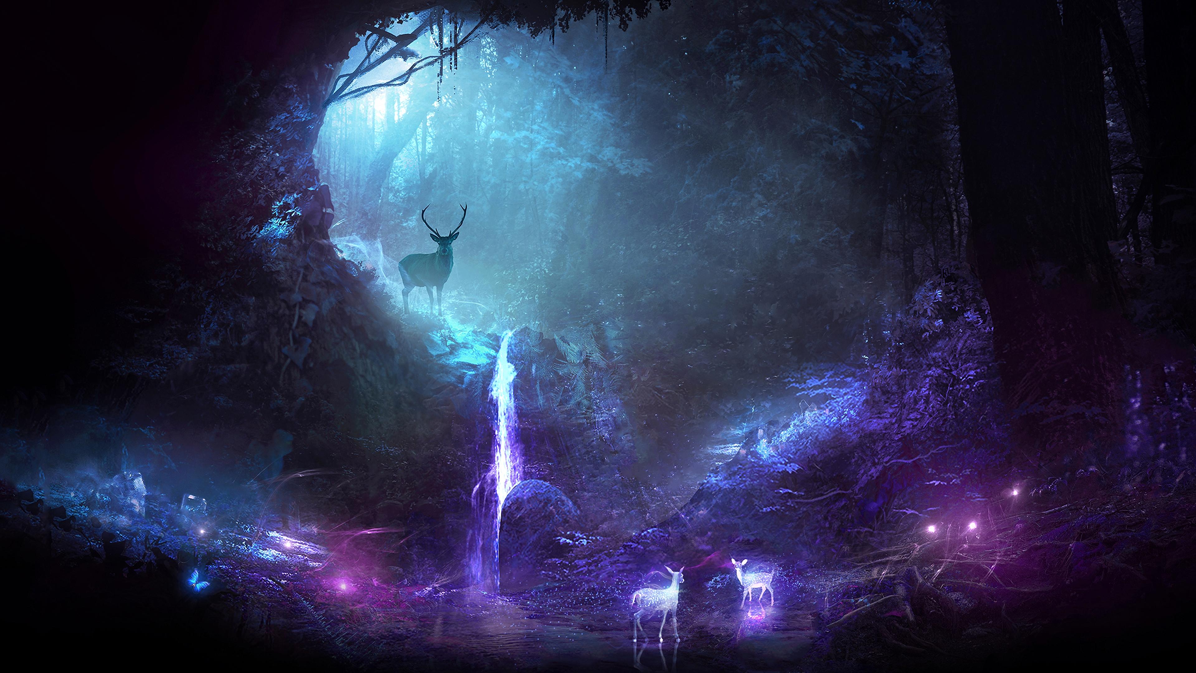 forest deer cave lights 4k 1541971483 - forest, deer, cave, lights 4k - Forest, Deer, Cave