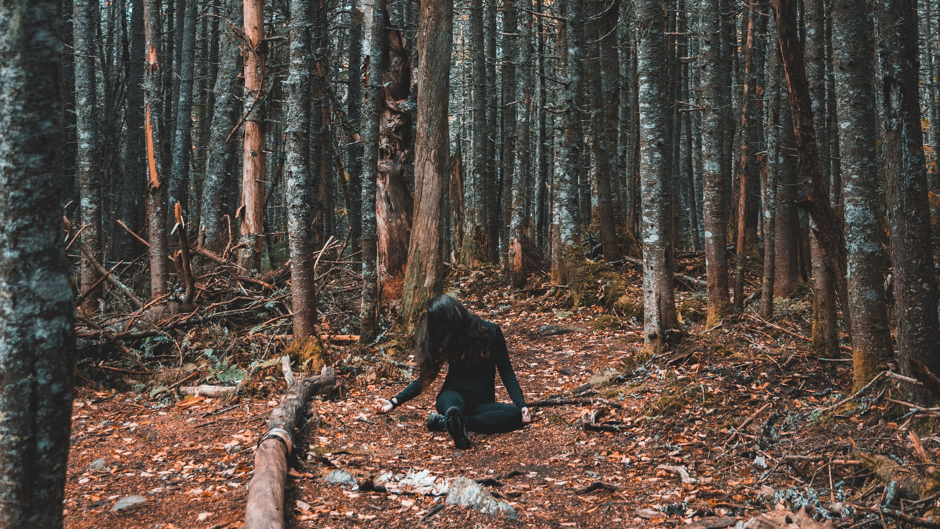 forest girl loneliness trees autumn 4k 1541115247 - forest, girl, loneliness, trees, autumn 4k - loneliness, Girl, Forest