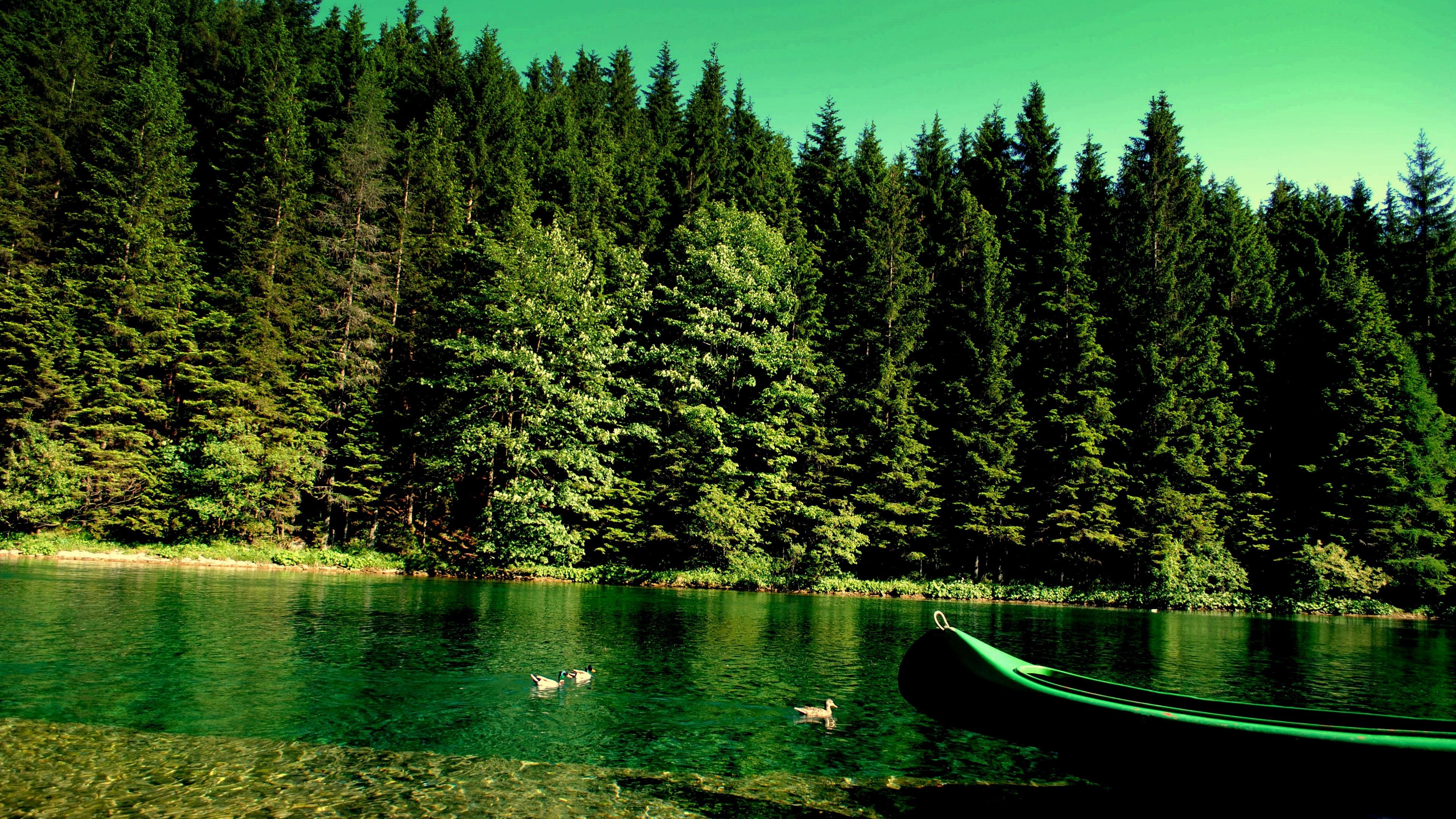 forest river boat nature 4k 1541117354 - forest, river, boat, nature 4k - River, Forest, Boat