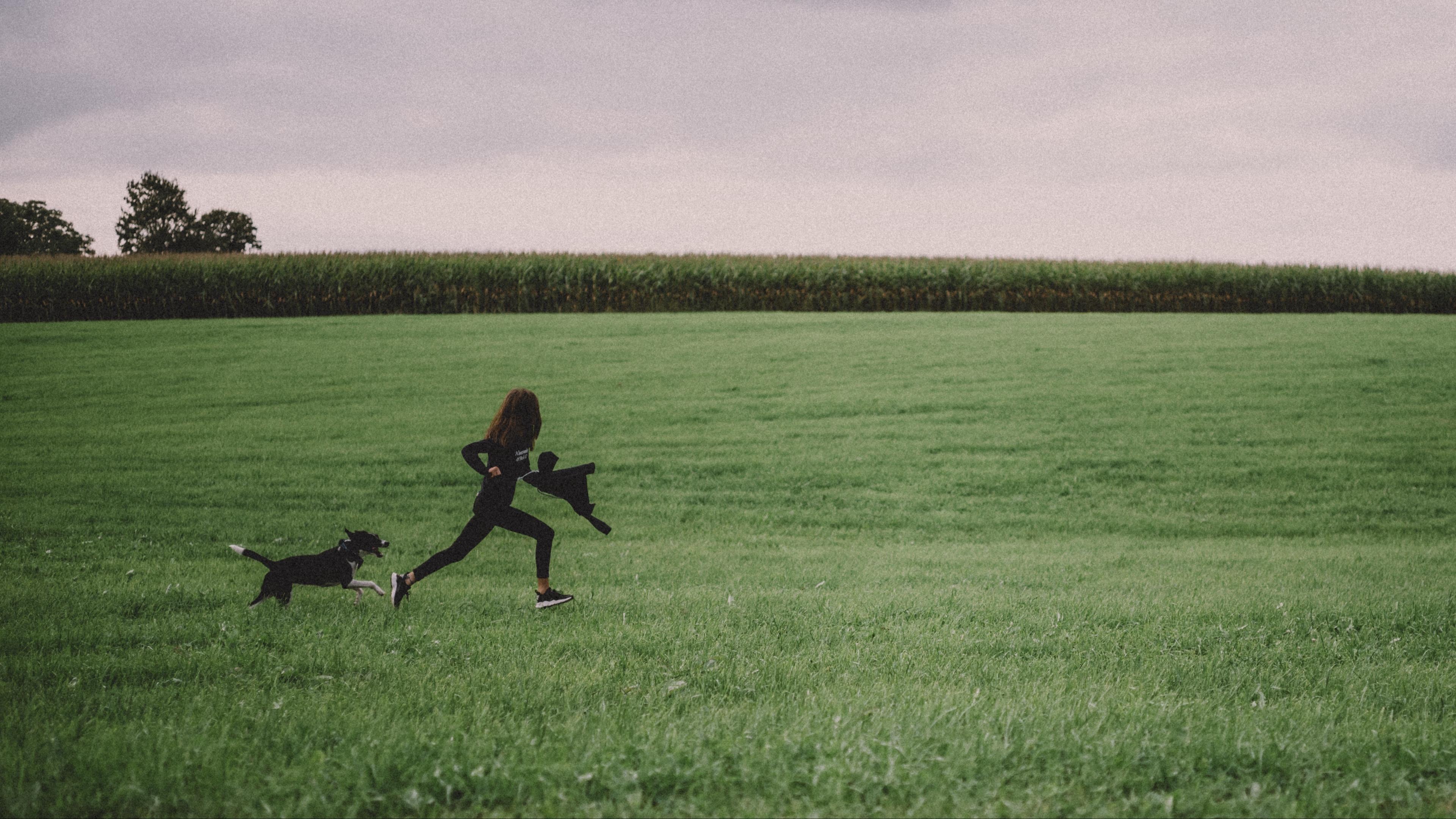 girl dog walk field 4k 1541116672 - girl, dog, walk, field 4k - walk, Girl, Dog