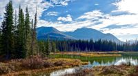 lake mountains trees 4k 1541116383 200x110 - lake, mountains, trees 4k - Trees, Mountains, Lake