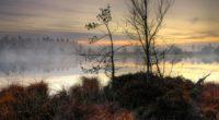 lake sunset fog trees landscape 4k 1541114437 200x110 - lake, sunset, fog, trees, landscape 4k - sunset, Lake, fog
